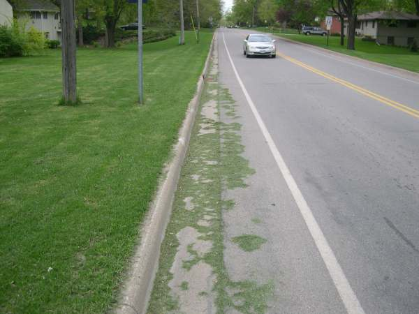 grass in the Bucyrus street